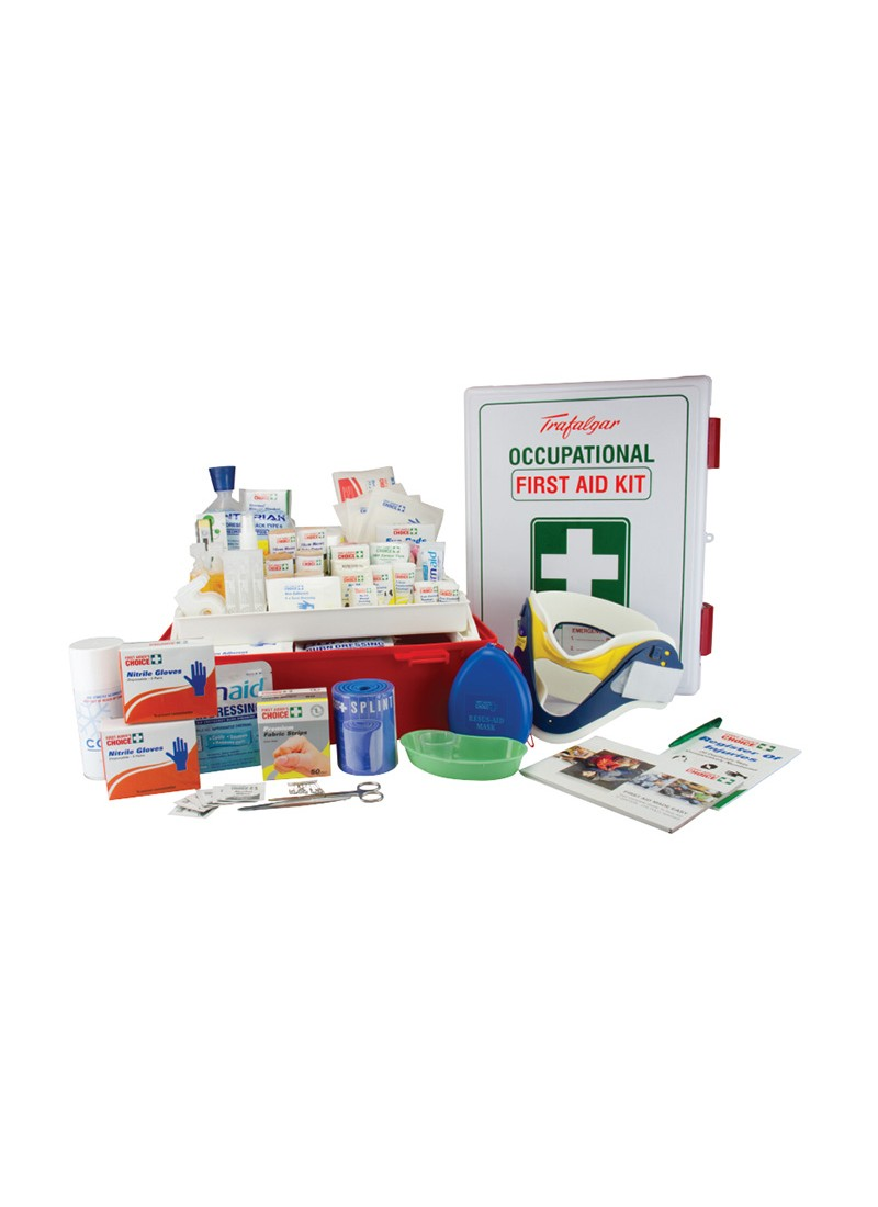 Mining First Aid Kit Large Wall Mount (Plastic Case)