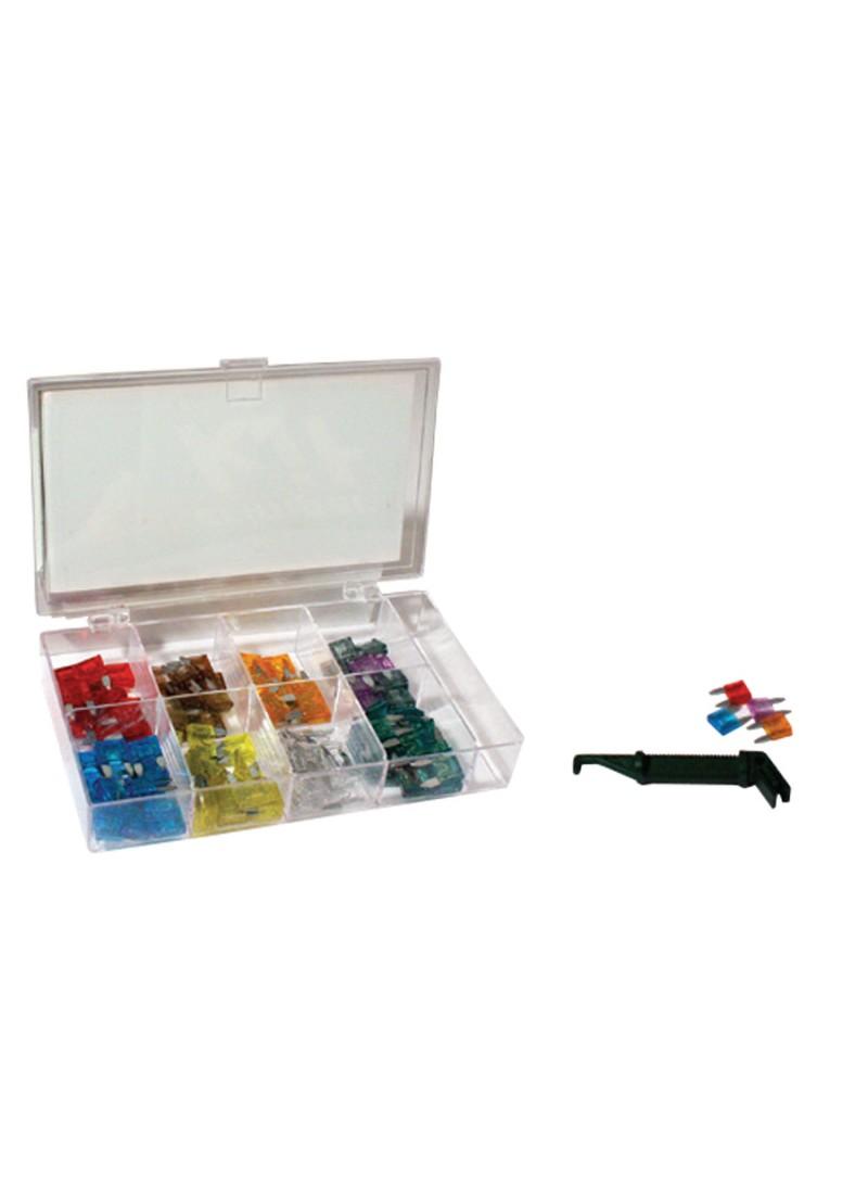 Mini Blade Fuse Kit Holder Box